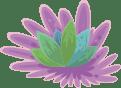 hierba2