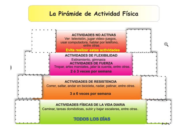 la pirámide de actividad fisica